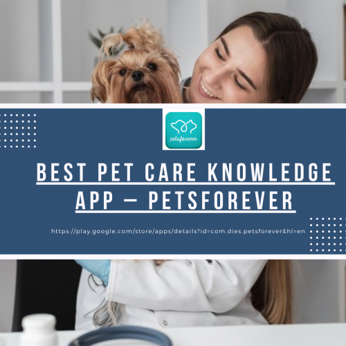 Best-Pet-Care-Knowledge-App--PetsForever.png