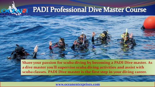 Be a leader who mentors and motivates others Enroll for PADI Divemaster Course to gain knowledge, supervision abilities, and become a role model to divers