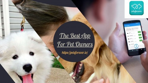 The-Best-App-For-Pet-Owners.jpg