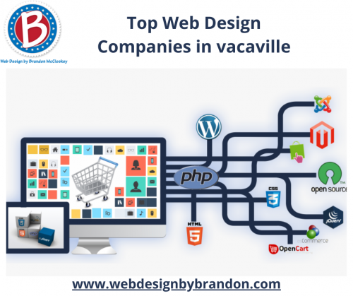 Web-Hosting-Companies-in-vacaville.png