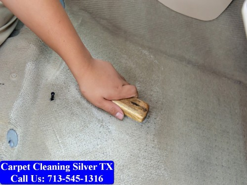 Carpet-cleaning-Silver-035.jpg