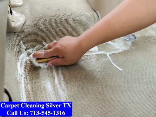 Carpet-cleaning-Silver-036.jpg