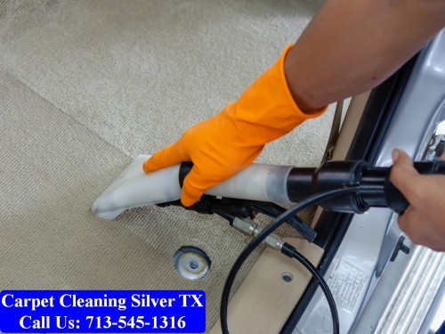 Carpet-cleaning-Silver-038.jpg