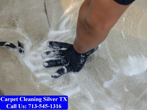 Carpet-cleaning-Silver-039.jpg