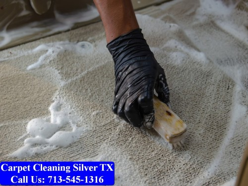 Carpet-cleaning-Silver-040.jpg
