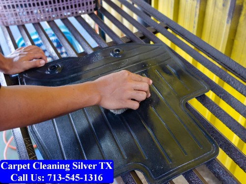 Carpet-cleaning-Silver-047.jpg