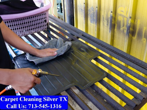 Carpet-cleaning-Silver-048.jpg