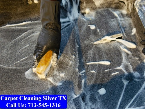 Carpet-cleaning-Silver-050.jpg