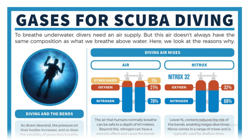 Gases-for-Scuba-Diving.png