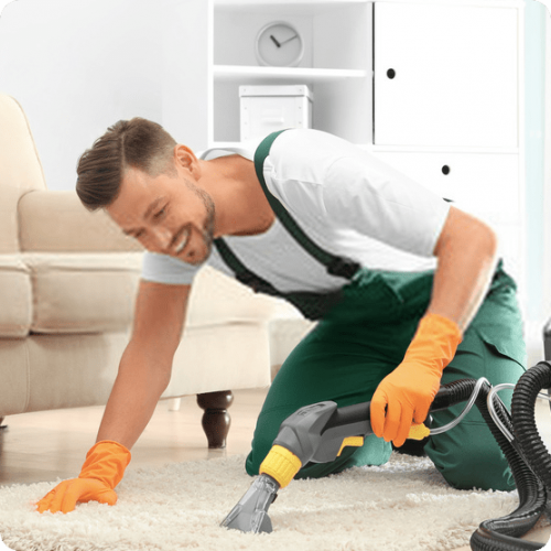 Spark-rug-cleaning.png