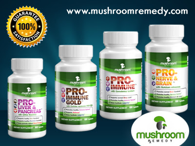 Mushroom Remedy, a leader in mushroom supplements, brings you the most potent medicinal mushrooms with proven extraction techniques. Our products are all nature and made in USA.  https://mushroomremedy.com