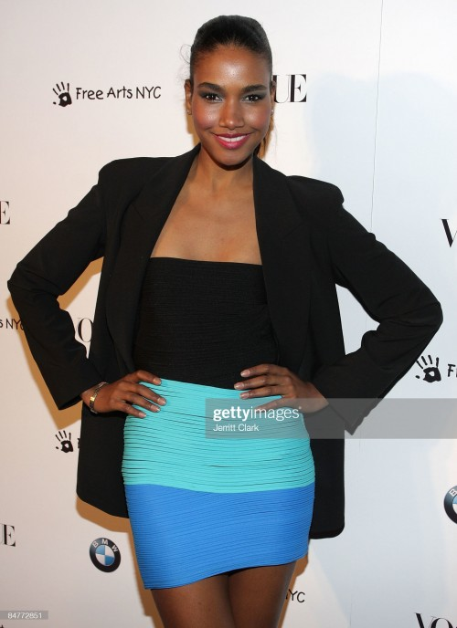 arlenis-sosa-attends-a-charity-benefit-cocktail-party-hosted-by-bmw-picture-id84772851s2048x2048.jpg