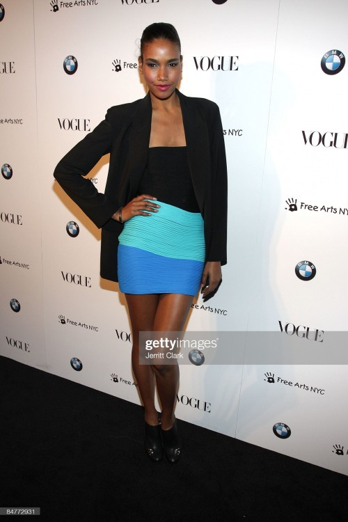 arlenis-sosa-attends-a-charity-benefit-cocktail-party-hosted-by-bmw-picture-id84772931s2048x2048.jpg