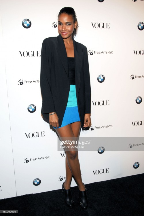 arlenis-sosa-attends-vogue-and-bmw-party-to-celebrate-the-new-2009-7-picture-id659242606s2048x2048.jpg
