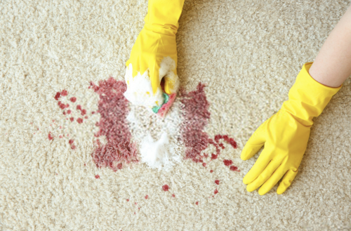 Carpet-Stain-Removal.png
