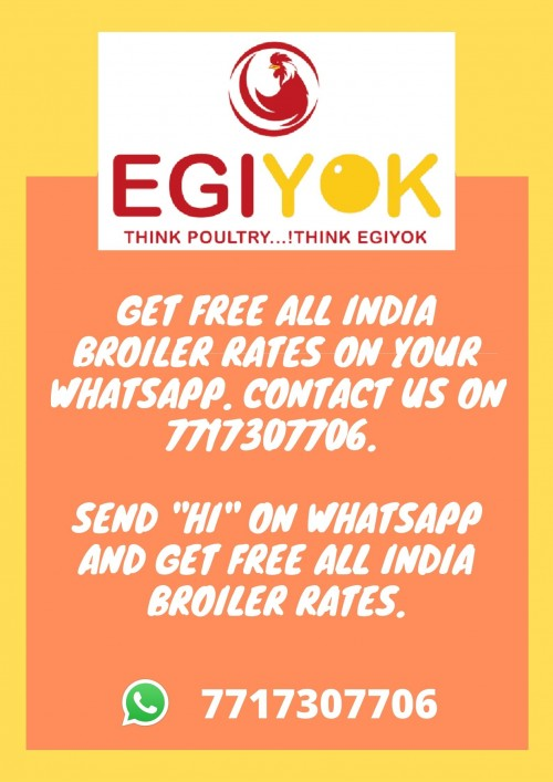 gET-FREE-ALL-INDIA-BROILER-RATES.-CONTACT-US-ON-7717307706.-1.jpg