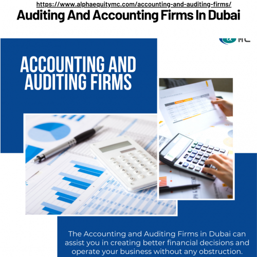 Accounting-and-auditing-firms.png
