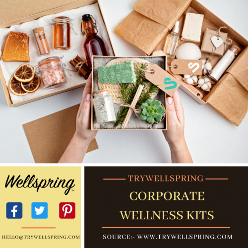 This kit also acknowledges your commitment to corporate wellness Kits. It would make sense if you offered remote in addition to work from home. Besides corporate wellness products, offer first-aid kits, personal care products, water bottles, and other items you'll appreciate having on hand. For more info:- https://www.trywellspring.com/our-brands