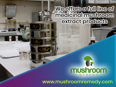 Mushroom Remedy, a leader in mushroom supplements, brings you the most potent medicinal mushrooms with proven extraction techniques. Our products are all nature and made in USA.  https://www.mushroomremedy.com