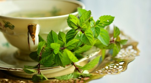 Ready to boost your daily routine and boost your health?  Before you raid the drugs aisle at your local drugstore, loot the rack in your kitchen! We shares some of the best herbs and spices that can boost your wellness. Read More- https://healthandfista.com/6-healing-herbs-and-spices-that-can-boost-your-wellness-every-day/